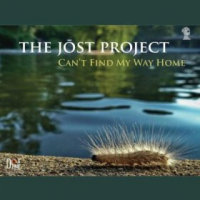 Album Can't Find My Way Home by Paul Jost