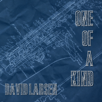 Album One of a Kind by David Larsen