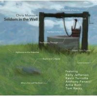 "Read ""Seldom in the Well"" reviewed by Jack Bowers"