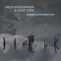 Summer Synthesis 1978 by Drew Schlesinger