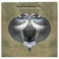 Matthias Spillmann Trio: Live at the Bird's Eye Jazz Club