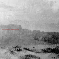"Read ""Heart/Noise"" reviewed by Karl Ackermann"