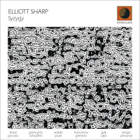 Album Syzygy by Elliott Sharp