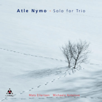 Atle Nymo: Solo for Trio