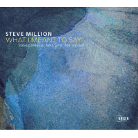 Album What I Meant to Say by Steve Million