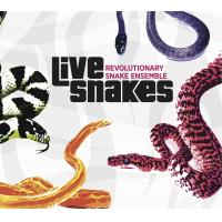 Live Snakes by Ken Field