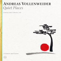 Andreas Vollenweider: Quiet Places
