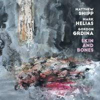 Album Skin And Bones by Matthew Shipp