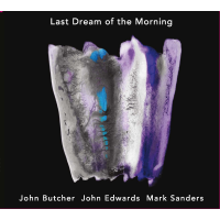 Album Last Dream at the Morning by John Butcher
