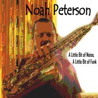 Album A Little Bit of Noise, A Little Bit of Funk by Noah Peterson