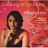 "Read ""Looking at the Moon"" reviewed by Angelo Leonardi"
