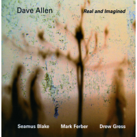 Album Real and Imagined by Dave Allen
