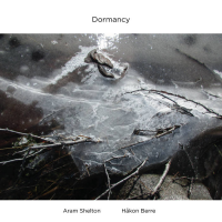 Album Dormancy by Aram Shelton