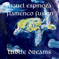"Read ""Turtle Dreams"" reviewed by Jim Olin"