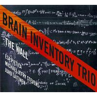 Album Brain Inventory Trio by Michael Jefry Stevens