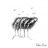 Album Vulture Forest by Kristoffer Vejslev Dyssegaard