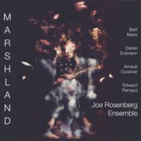 Joe Rosenberg Ensemble: Marshland