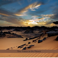 Album Two Voices In The Desert by Perry Robinson