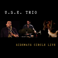 Album U.S.E. Trio - Sideways Circle LIVE by Sandy Eldred