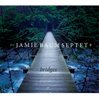 Jamie Baum: Bridges