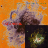 Patrick Zimmerli: Expansion