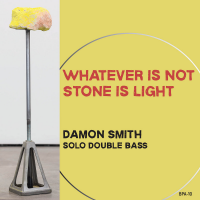 Album Whatever Is Not Stone Is Light by Damon Smith