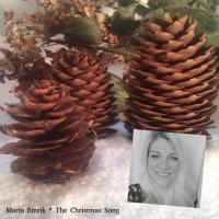 The Christmas Song (Single)