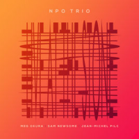 Meg Okura: NPO Trio - Live at the Stone