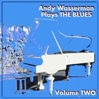 Album Andy Wasserman Plays THE BLUES: Volume Two by Andy Wasserman