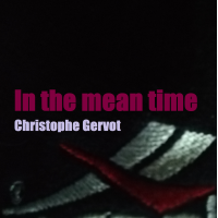 Album In the mean time by Christophe Gervot