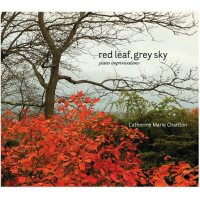 Red Leaf, Grey Sky: Piano Improvisations
