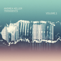 Album Transients Volume 1 by Andrea Keller