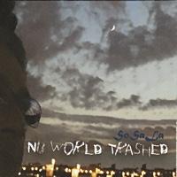 "Read ""Nu World Trashed"" reviewed by Glenn Astarita"