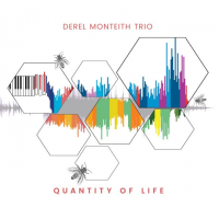 Quantity of Life by Derel Monteith
