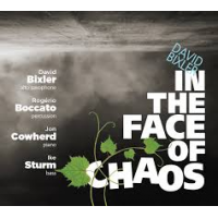 Album In The Face Of Chaos by David Bixler