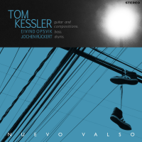 "Read ""Nuevo Valso"" reviewed by Friedrich Kunzmann"
