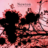 "Read ""Newton"" reviewed by John Eyles"