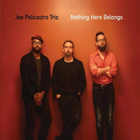 Album Nothing Here Belongs by Joe Policastro