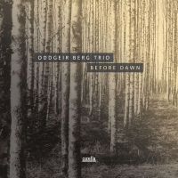 Album Before Dawn by Oddgeir Berg