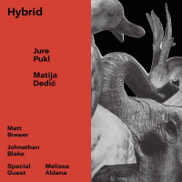 "Read ""Hybrid"" reviewed by Roger Farbey"