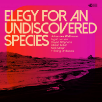 Elegy For An Undiscovered  Species
