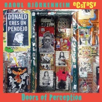 Album Doors of Perception by Raoul Bjorkenheim