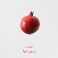 Album PRIM - 40 Days by Felix Biller