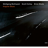 Album Angular Blues by Wolfgang Muthspiel