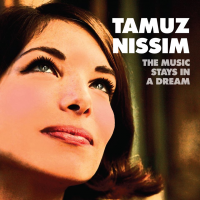 Album The Music Stays in a Dream by Tamuz Nissim