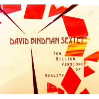 Ten Billion Versions of Reality by David Bindman