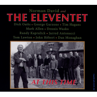 Album At This Time by Norman David