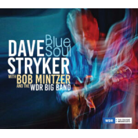 Album Blue Soul by Dave Stryker