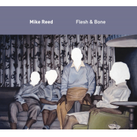 Album Flesh & Bone by Mike Reed