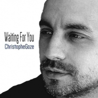 Album Waiting For You (Single) by Christophe Goze